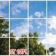 آسمان مجازی درخت و آسمان