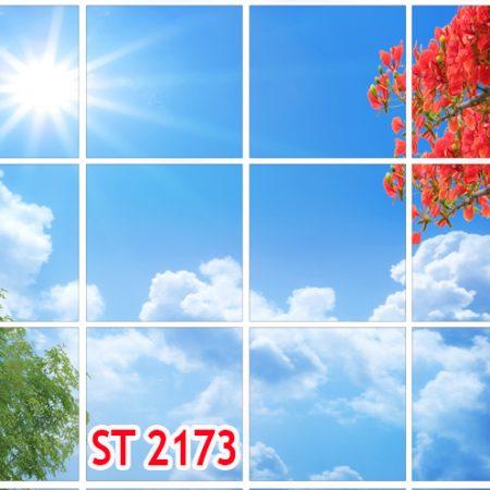 تایل اسمان مجازی st 2173